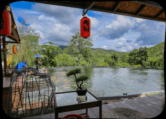 Japanese-Carp-Fish-Pond-1
