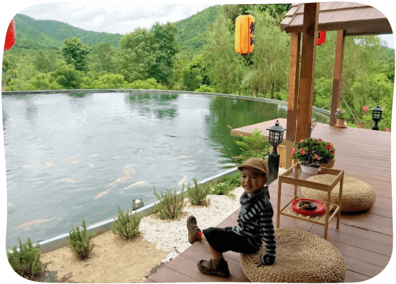 Japanese-Carp-Fish-Pond-4